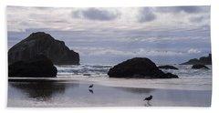 Seagull Reflections Beach Towel
