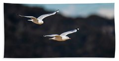 Seagulls In Flight Beach Towel