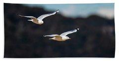 Seagulls In Flight Beach Sheet