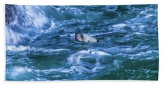 Beach Towel featuring the photograph Seal In Teh Water by Jonny D