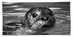 Seal In Water Beach Towel