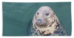 Seal With Long Whiskers With Head Sticking Out Of Water Beach Towel