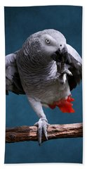 Secretive Gray Parrot Beach Towel