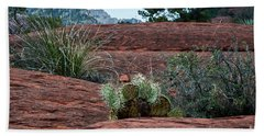 Beach Towel featuring the photograph Sedona Cactus by Kirt Tisdale