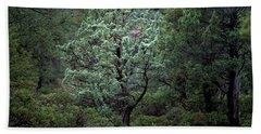 Sedona Tree #1 Beach Sheet