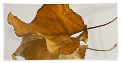 Seeing Double Autumn Leaf  Beach Towel by Sandra Foster