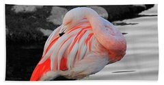 Selective Color Flamingo  Beach Sheet by Shoal Hollingsworth