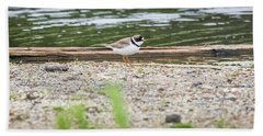 Beach Towel featuring the photograph Semipalmated Plover by Ricky L Jones