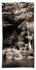 Sepia Forest Beach Sheet by Betsy Zimmerli