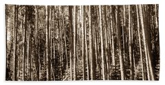 Beach Towel featuring the photograph Sepia Forest by Marilyn Hunt