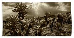 Sepia Tone Of Cholla Cactus Garden Bathed In Sunlight Beach Towel