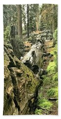Sequoia Fallen Tree Beach Towel