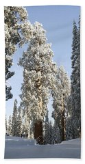 Sequoia National Park 4 Beach Towel