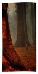Sequoias In The Clouds Beach Towel