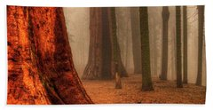 Sequoias Touching The Clouds Beach Sheet