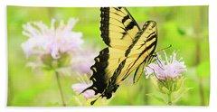 Series Of Yellow Swallowtail #4 Of 6 Beach Sheet