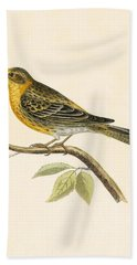 Serin Finch Beach Towel by English School