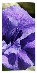 Shades Of Purple Beach Sheet