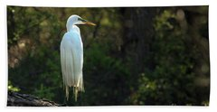 Shadow Heron Beach Towel