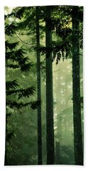 Shadows Of Light Beach Towel by Connie Handscomb