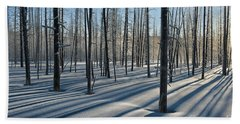 Shadows Of The Forest Beach Towel