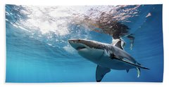 Shark Rays Beach Towel by Shane Linke