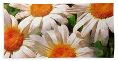 Shasta Daisies 2015 Beach Sheet