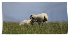 Sheep 4221 Beach Towel