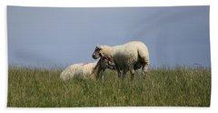 Sheep 4221 Beach Sheet