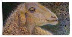Sheep As Beach Towel