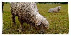 Sheep Begin A New Day Beach Towel