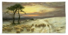 Sheep In The Snow Beach Towel