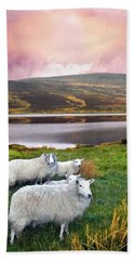 Sheep Of Donegal Beach Towel