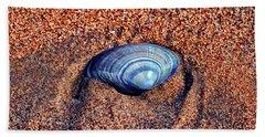 Shell Beach Sheet