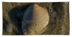 Shell On The Beach  Beach Sheet