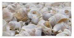 Shells 1 Beach Towel