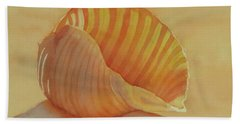 Shells 6 Beach Towel