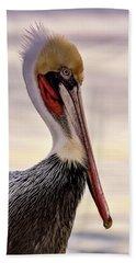 Shelter Island's Pelican Beach Sheet