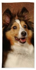Beach Towel featuring the photograph Sheltie by Greg Mimbs