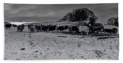 Beach Sheet featuring the photograph Shepherds Work by Keith Elliott