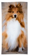 Shetland Sheepdog - Sheltie Beach Sheet
