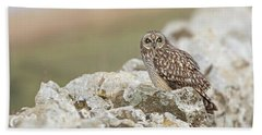 Short-eared Owl In Cotswolds Beach Towel