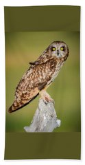 Short Eared Owl Beach Towel