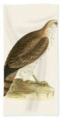 Short Toed Eagle Beach Towel by English School