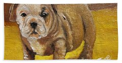 Chloe The   Flying Lamb Productions      Shortstop The English Bulldog Pup Beach Towel