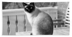 Siamese Cat Beach Sheet