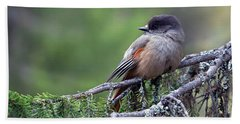 Siberian Jay Beach Towel