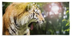 Siberian Tiger In Sunlit Forest Beach Towel