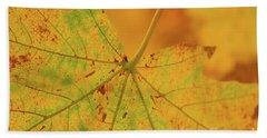 Signs Of Autumn  Beach Sheet