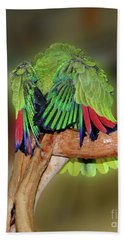 Silly Amazon Parrot Beach Sheet by Smilin Eyes  Treasures